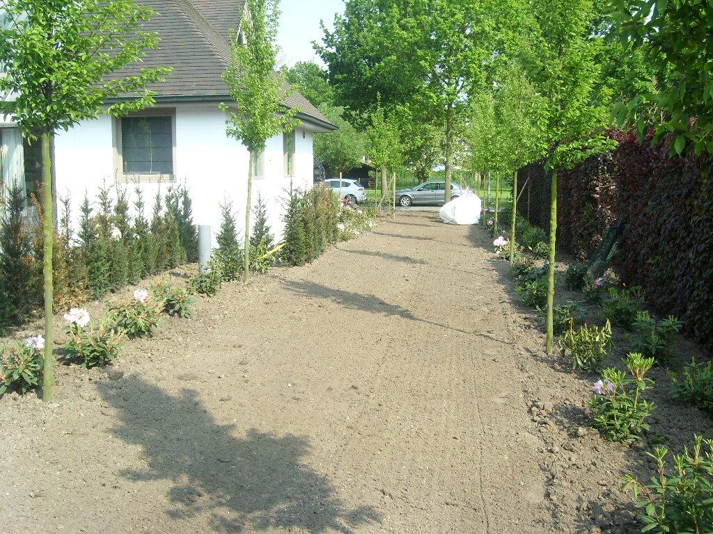 8 beplantingswerken tuinen lieven cornelis - Massief idee van tuin ...